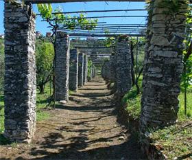 afbeelding van het project: Meertalige website voor Agriturismo Villa de Nobili